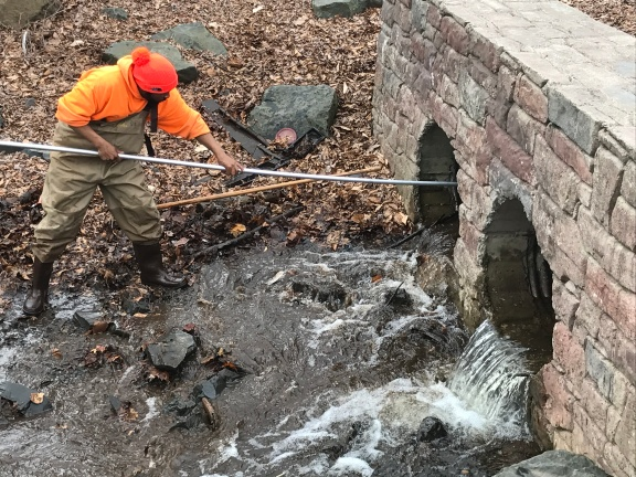 Keney Pond Trout Restocking 4