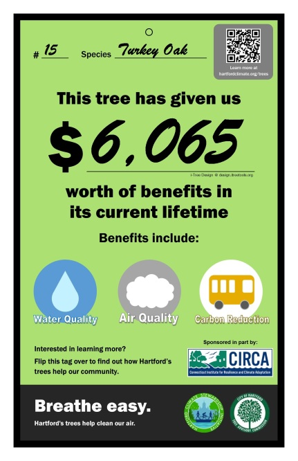 Trees provide numerous public health benefits